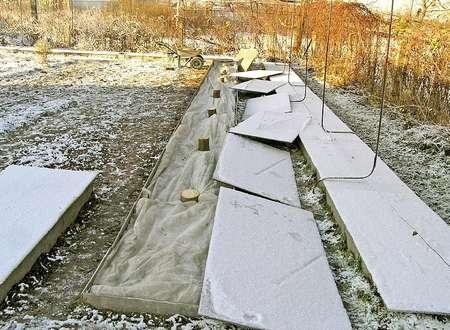 Подготовка клематиса к зиме