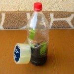 Черенок-в-закрытой-бутылке.