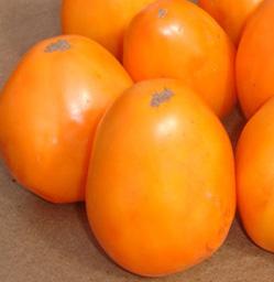 Король оранжевых