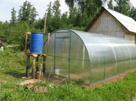 Смягчение воды для полива растений