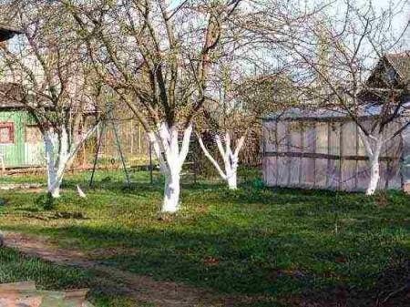 Календарь работ садоводов и огородников.