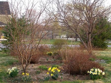 Работы цветоводов в апреле