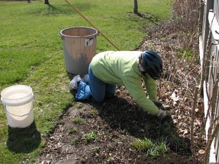 Работы в саду в апреле.