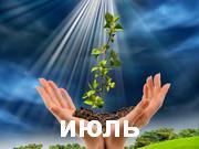 Влияние ночного светила на жизнь растений.