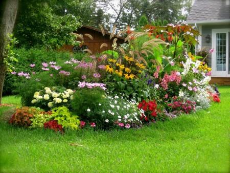 Работы с цветами летом.