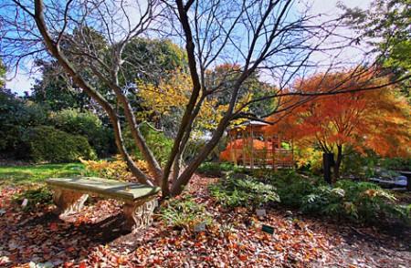 Октябрь на даче: что надо сделать в саду и на огороде