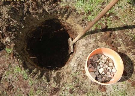 Готовим посадочные ямы для посадки деревьев.