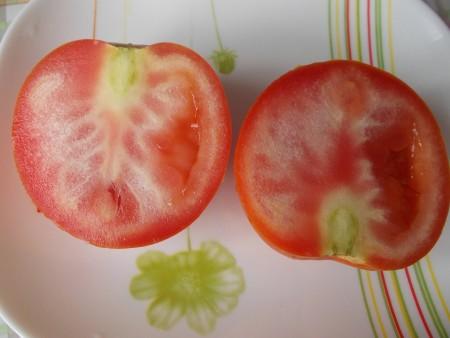 Болезни помидор.