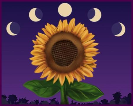 Лунный посевной календарь садоводов и огородников на июль 2016 года.