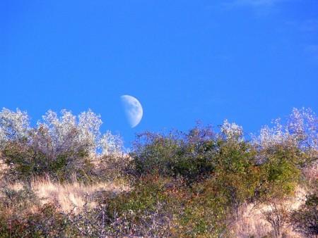 Лунный календарь 1980 октябрь