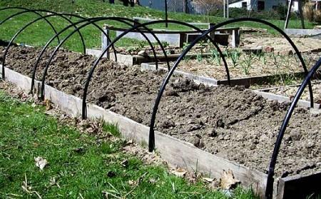 Работы огородников в апреле по Лунному календарю