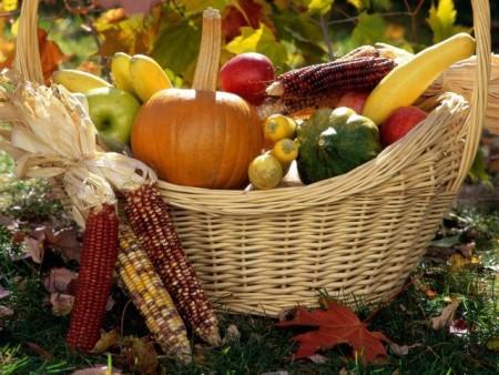 Лунный календарь садоводов и огородников на сентябрь 2016
