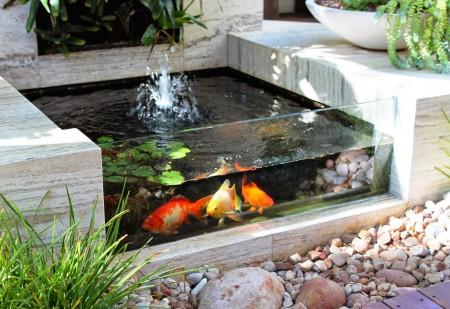 На снимке искусственный водоем с рыбками