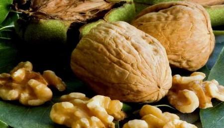 Обзор плодов грецких орешков.