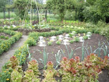 Оригинальное оформление огорода