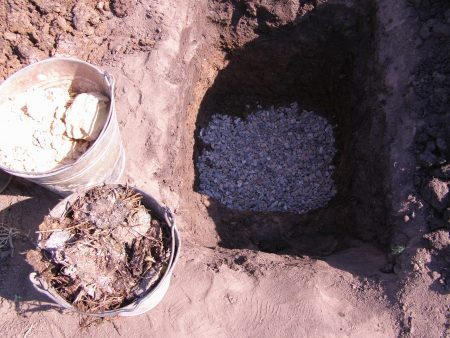 Подготовка почвы для посадки смородины Селеченская.