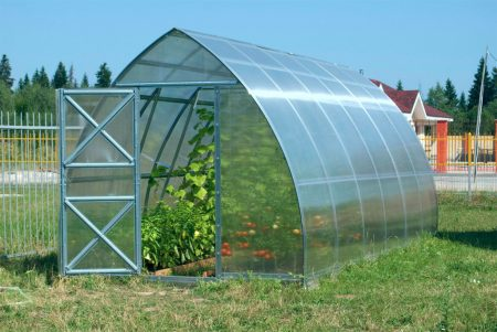 Теплица для выращивания садовой земляники.