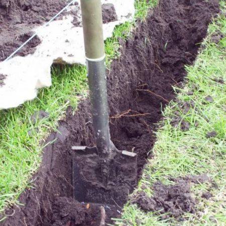 Смородину осенью можно сажать и в траншеи, и посадочные ямы.