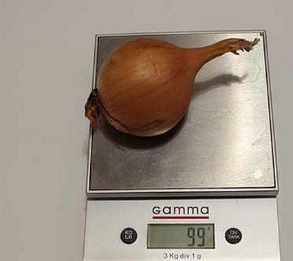 Сколько грамм в одной луковке.