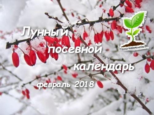 Лунный посевной календарь на февраль 2018 г