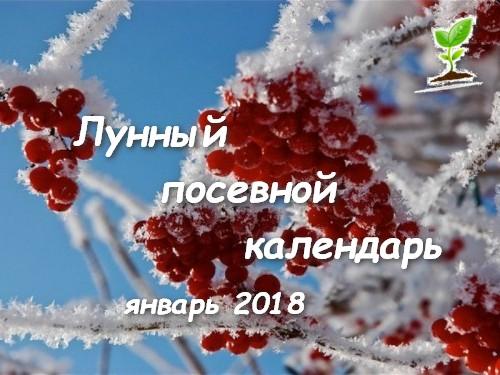 Лунный посевной календарь на январь 2018