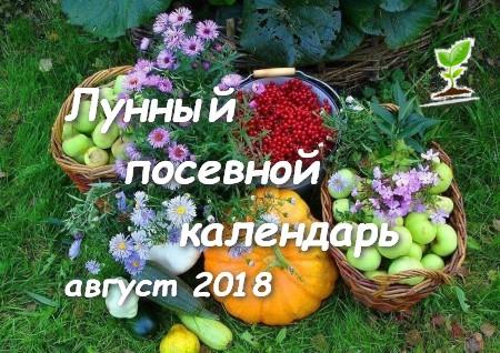 Лунный посевной календарь на август 2018 садоводов и огородников