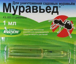 Муравьед поможет избавиться от муравьев.