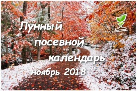 Лунный посевной календарь на ноябрь 2018 года.
