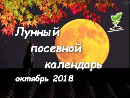 Лунный посевной календарь на октябрь 2018 года.