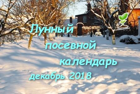 Лунный календарь для садоводов и огородников на декабрь 2018 года