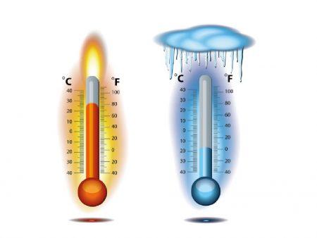 Разница дневных и ночных температур приводит к пожелтению завязи.