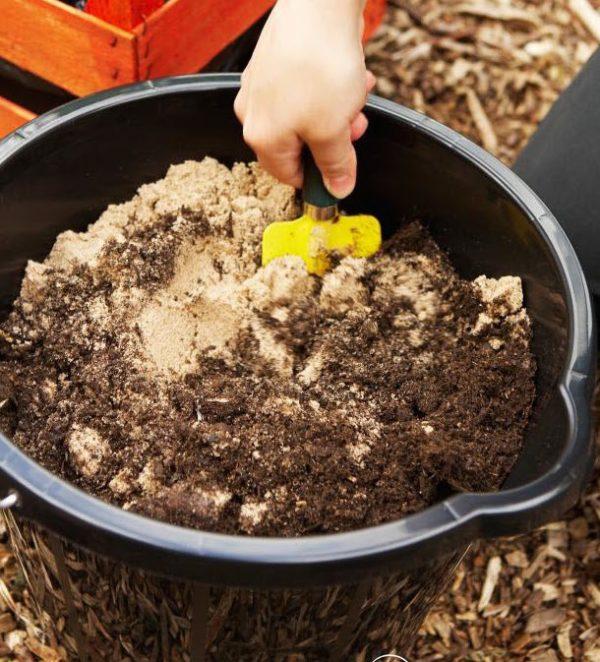 Подготовка почвы к посеву семян.