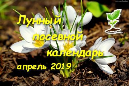 Посевной календарь на апрель 2019 года.