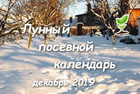 Лунный посевной календарь на декабрь 2019 года.
