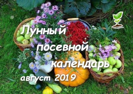 Посевной календарь садоводов на август 2019 года