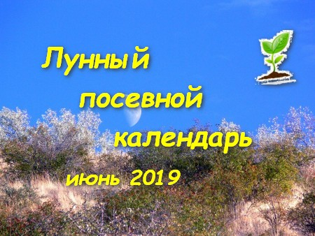 Календарь садоводов и огородников на июнь 2019 года.