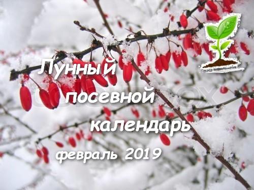 Лунный посевной календарь на февраль 2019.