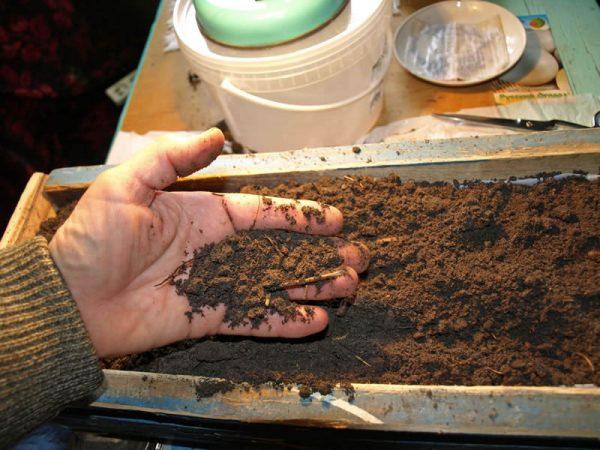 Подготовка грунта к посеву