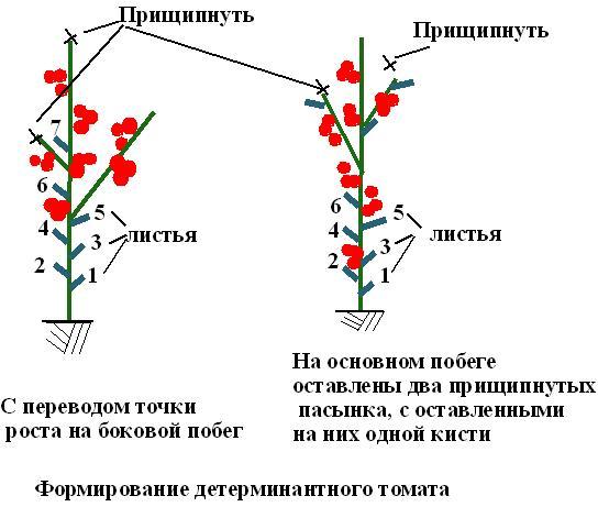 Формирование кустов