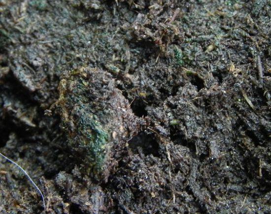 Переувлажненная почва