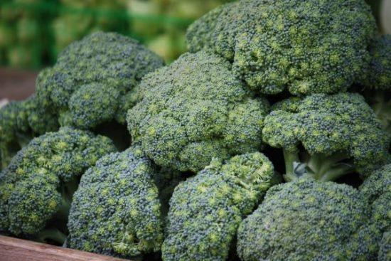 Уборка и хранение урожая брокколи