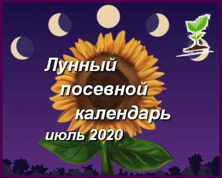 календарь на июль 2020