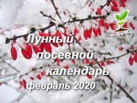 Календарь на февраль 2020