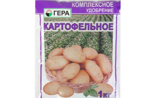 Гера картофельное