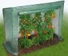 uhod za pomidorami v teplice (7)